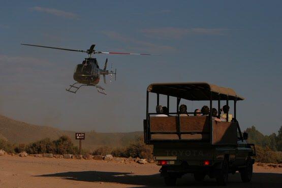 fly-in-safari0012